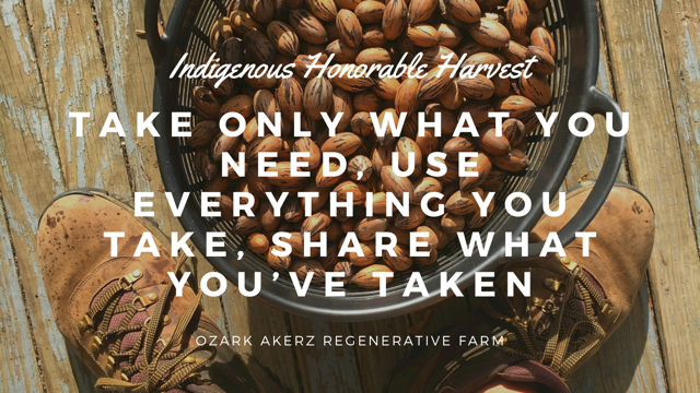 A basket of pecans and some old boots overlayed with the text - Honorable Harvest Take only what you need, use everything you take, share what you've taken